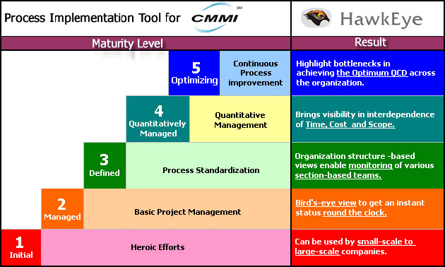 An overview of the capability maturity model